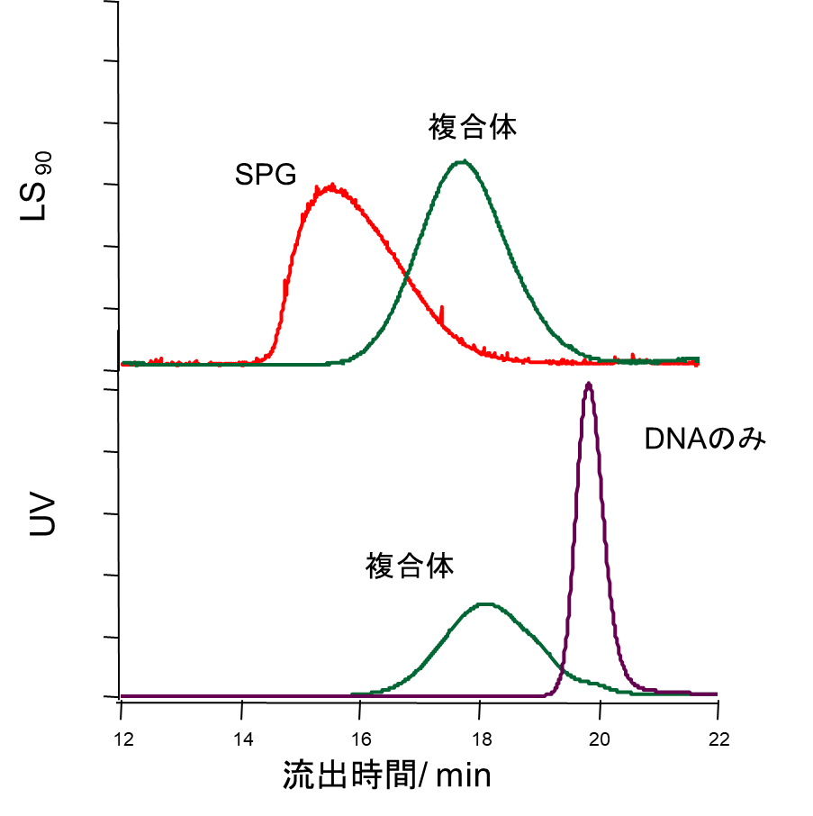 図2. GPC-MALSを用いた測定